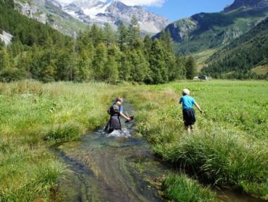 Jeux dans le ruisseau