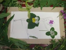 Dessin et composition florale